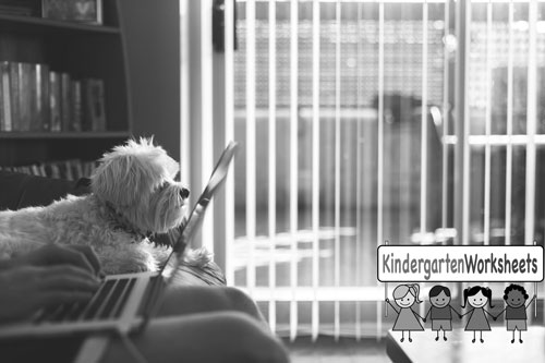 A dog and a laptop image promoting the Weekly Worksheets Club.