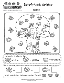 Butterfly Activity Worksheet