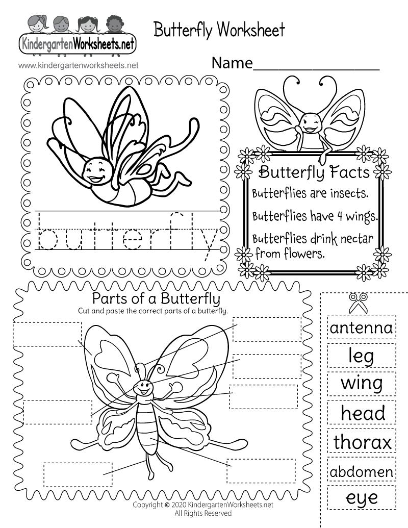 butterfly worksheet free kindergarten learning worksheet for kids. Black Bedroom Furniture Sets. Home Design Ideas