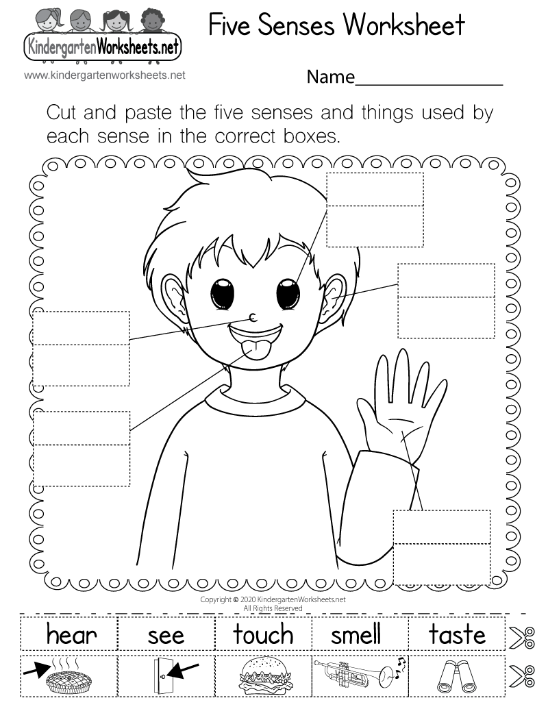 Worksheet Five Senses Worksheet For Kindergarten five senses worksheet free kindergarten learning for kids printable