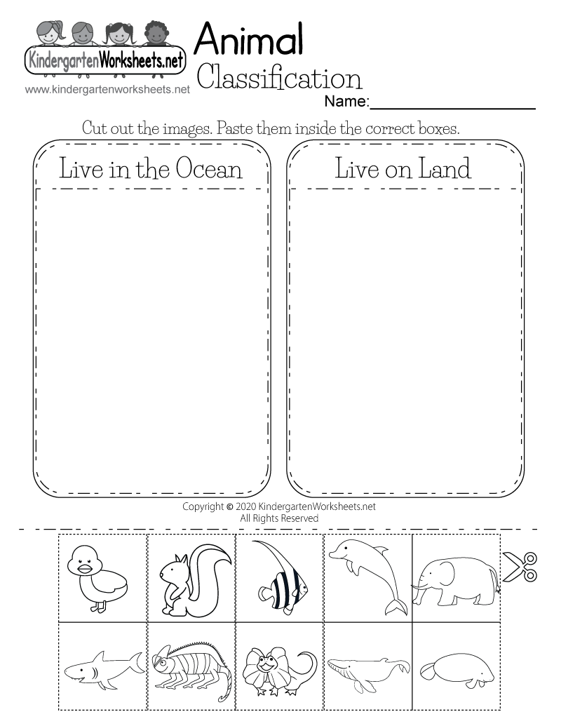 Life Science Animal Worksheet - Free Kindergarten Learning Worksheet ...