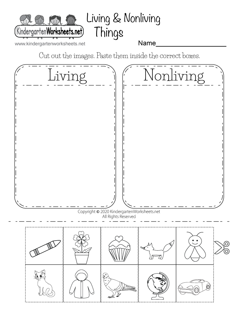 Kindergarten Science Worksheets : Life science worksheet free kindergarten learning